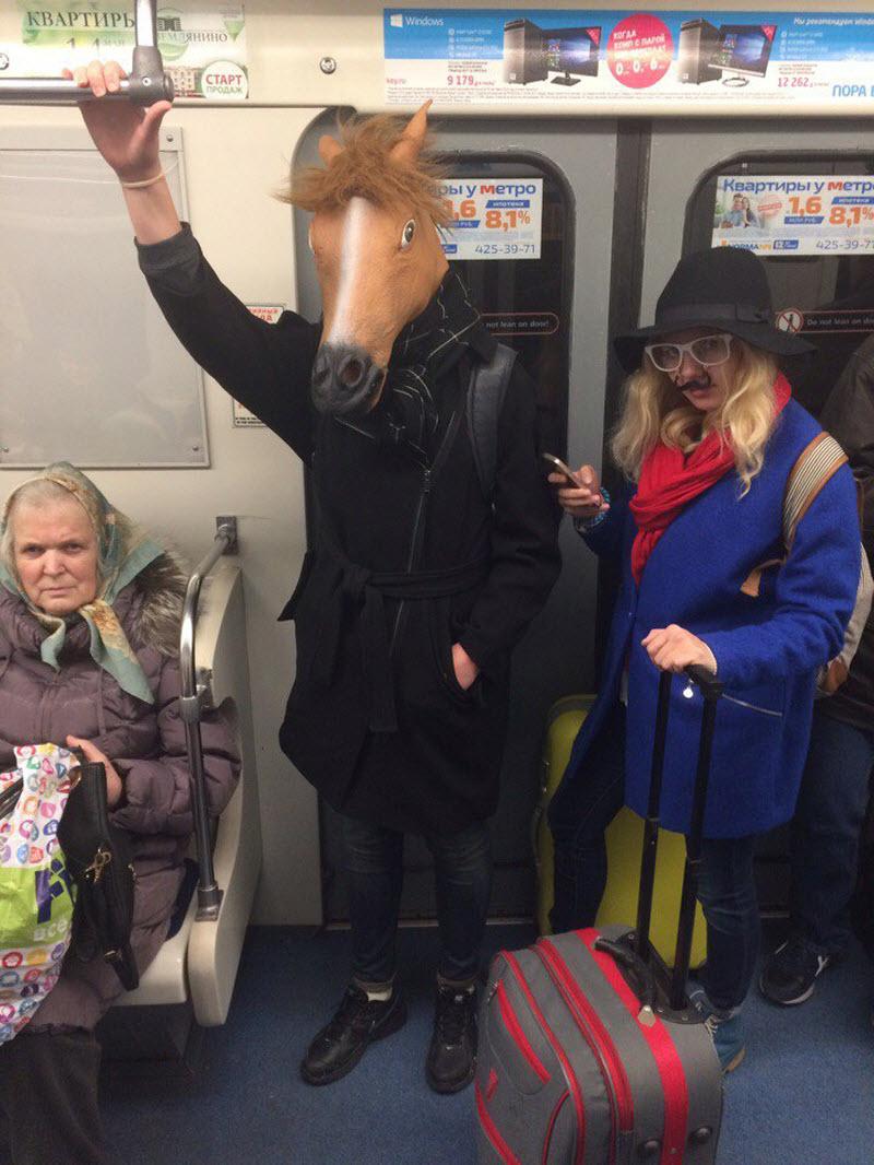 С лошадью можно