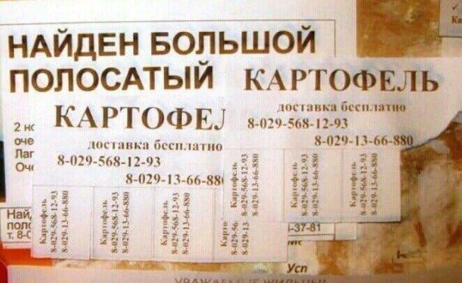 Гостинцы из Белоруссии