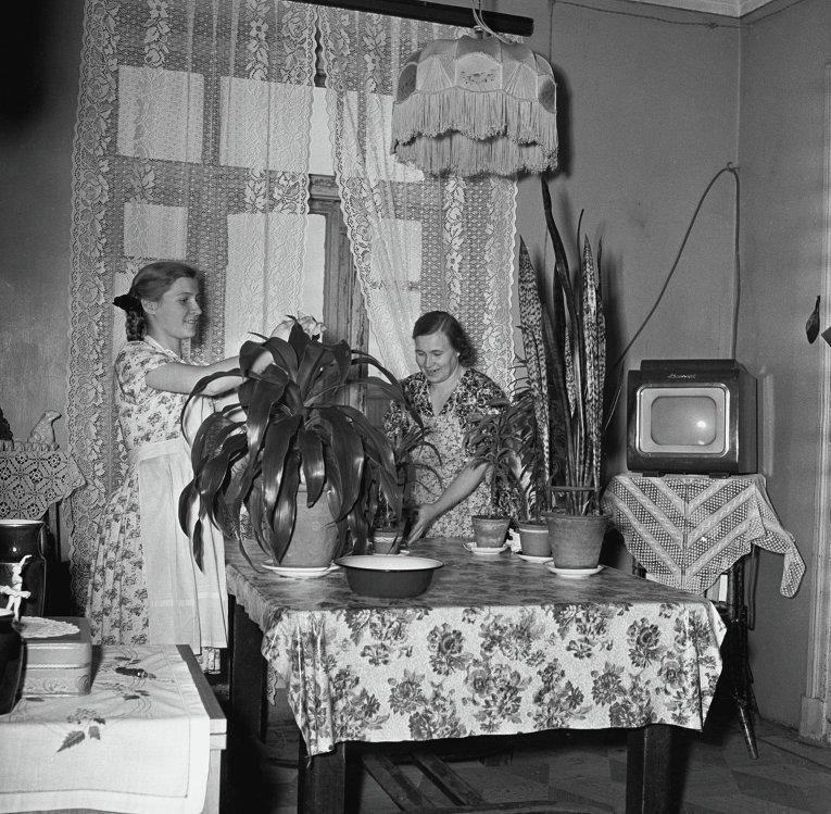 Шикарная квартира, 1960 год