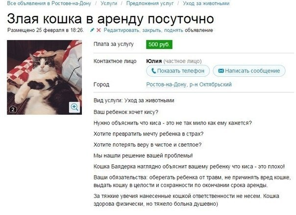 Кошка для поломки детской психики