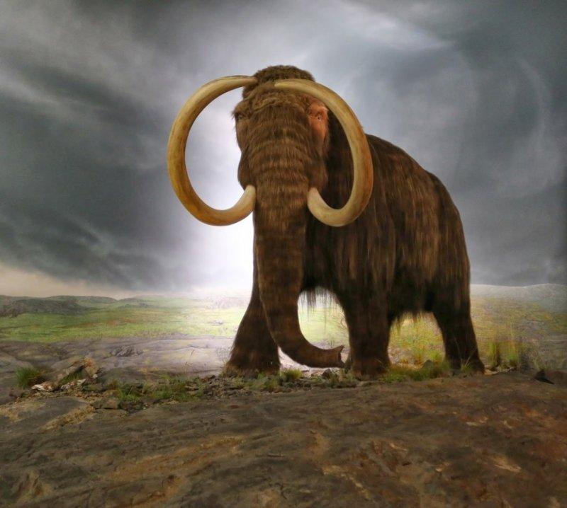 Зачем ученые оживили доисторических паразитов, найденных в вечной мерзлоте?