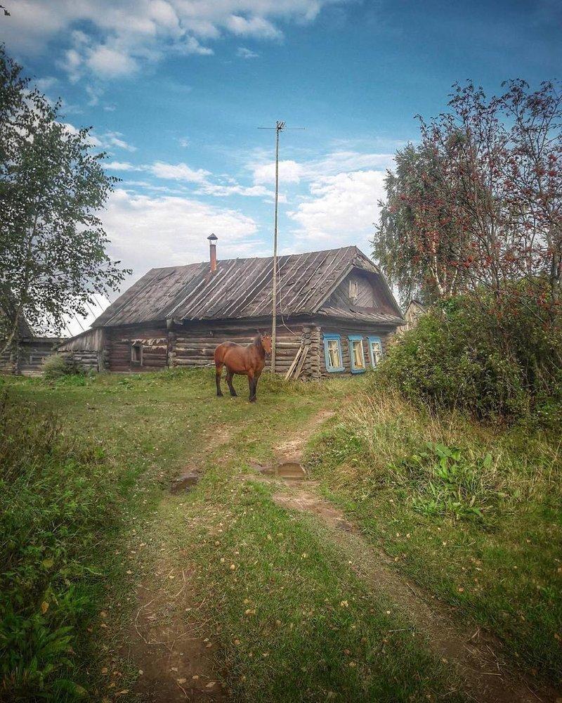 25 кадров о деревне: там русский дух, там Русью пахнет