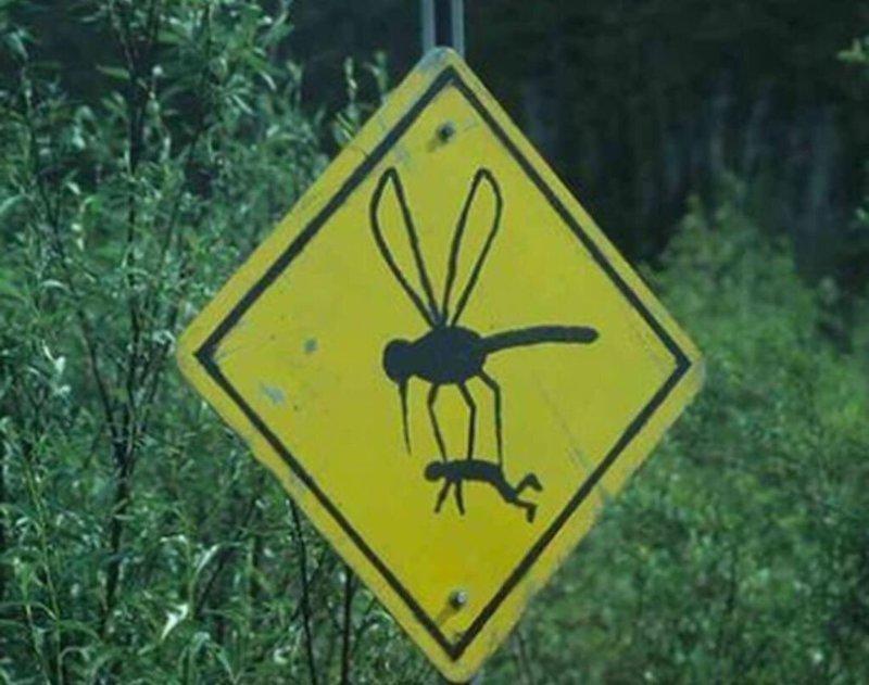 Людям надо быть осторожными