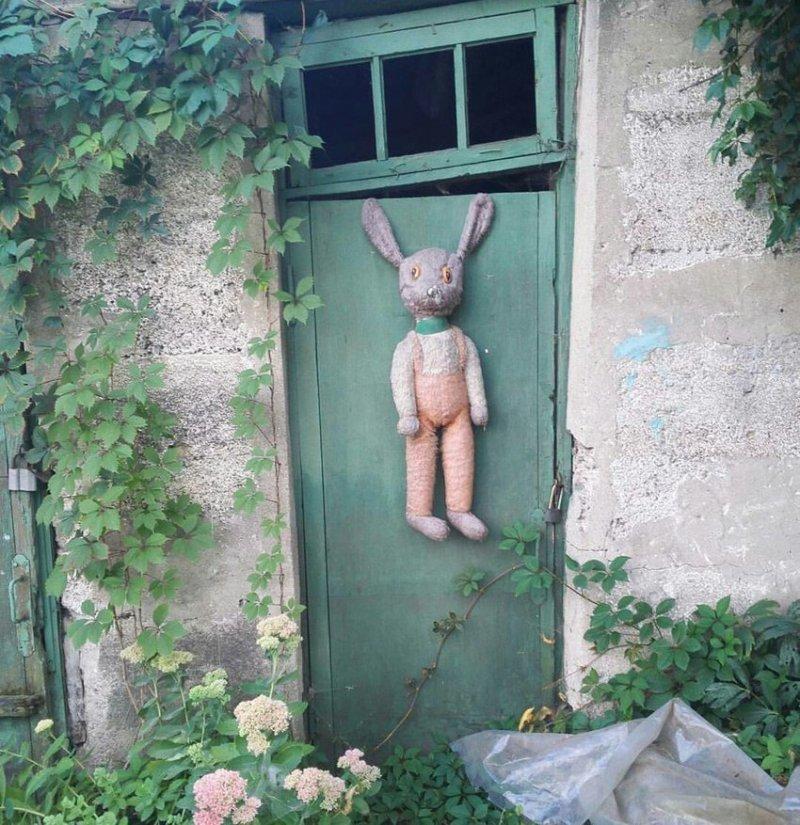 Сложная жизнь бездомной игрушки из Липецка