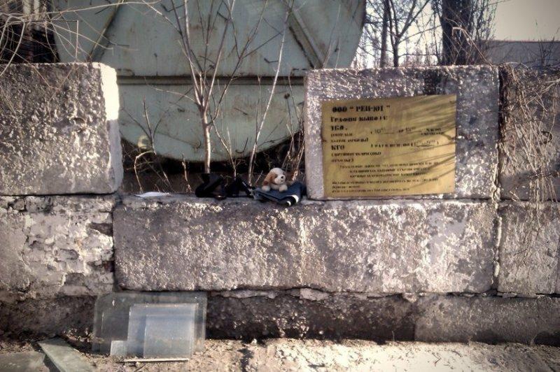 """В Воронеже, напротив, """"друзья детства"""" очень маленькие, им легко прятаться от хищников."""