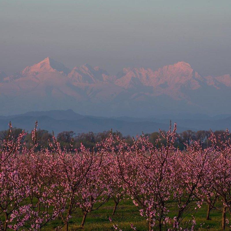Кабардино-Балкария, утро в апреле