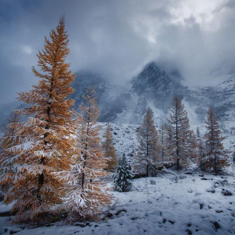 Зима в Республике Алтай