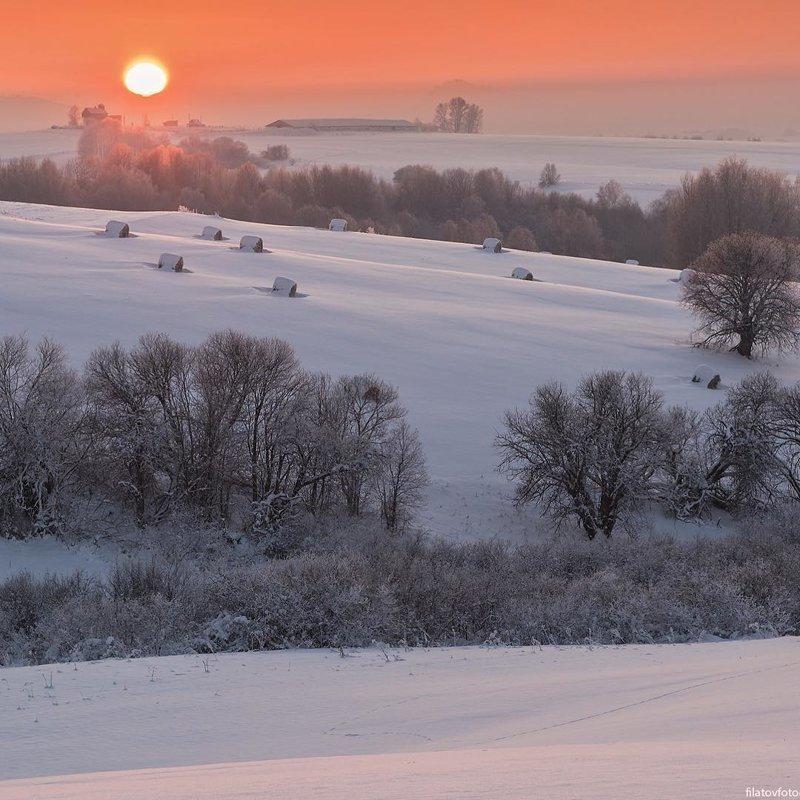 Предгорья Алтайского края