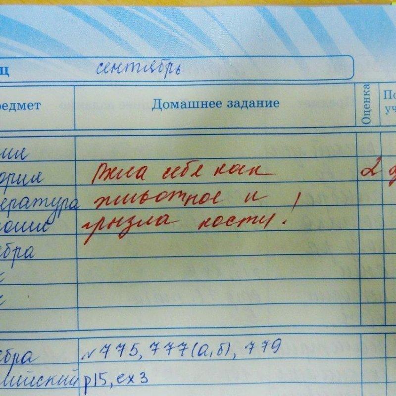 4. Кажется, учительница забыла написать самое главное: чьи это были кости!