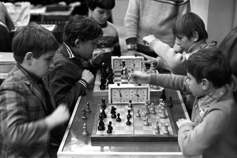 Шахматный кружок, а не Нью-Васюки