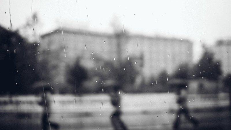 ходить на экскурсии под зонтом
