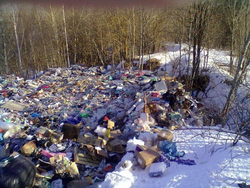 Многие компании, за деньги берущиеся вывозить мусор на свалки, на деле выкидывают его где попало, нанося природе невосполнимый вред и делая места обитания человека на много лет грязными