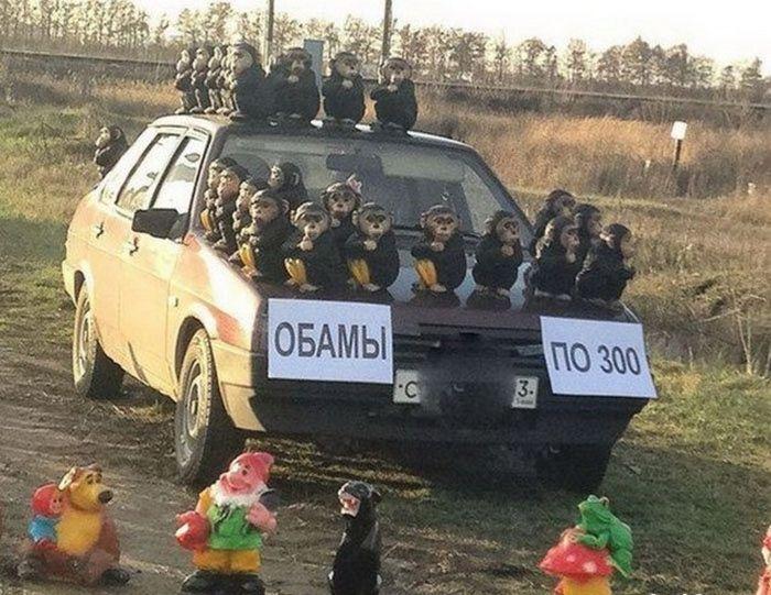 В России любят африканских зверей