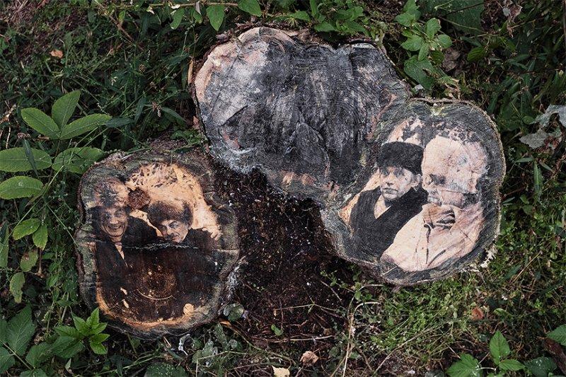 Всего выполнено 8 репродукций, в которых были использованы снимки Ахмадулиной, Пастернака, Вознесенского, Окуджавы, Евтушенко, Чуковского...