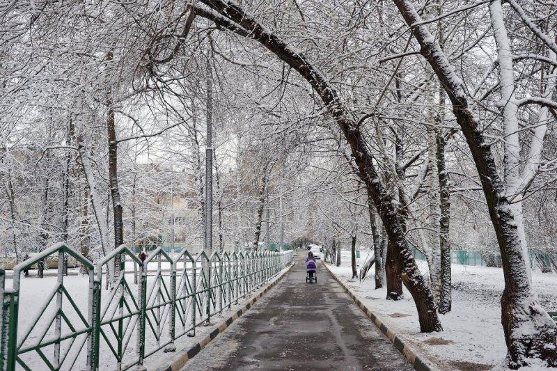 Романтика, «день жестянщика» и много снежинок: 10 снимков первого робкого снега