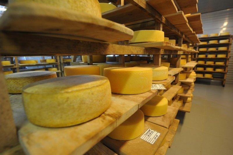 5 фактов из истории сыра в России