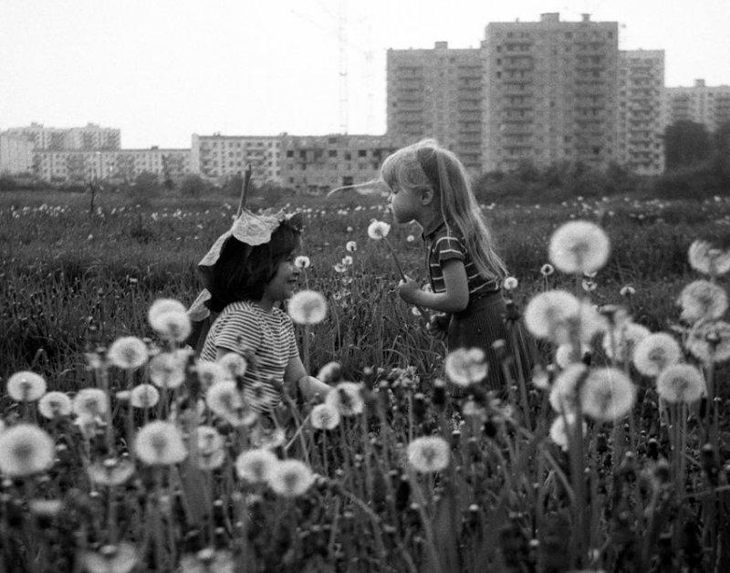 Вот такое вот оно, советское детство среди одуванчиков! история, ссср, фото