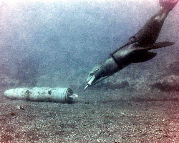 Дельфины – помощники русских военных аудиомаяк, военное снаряжение, дельфин, млекопитающее, торпеда
