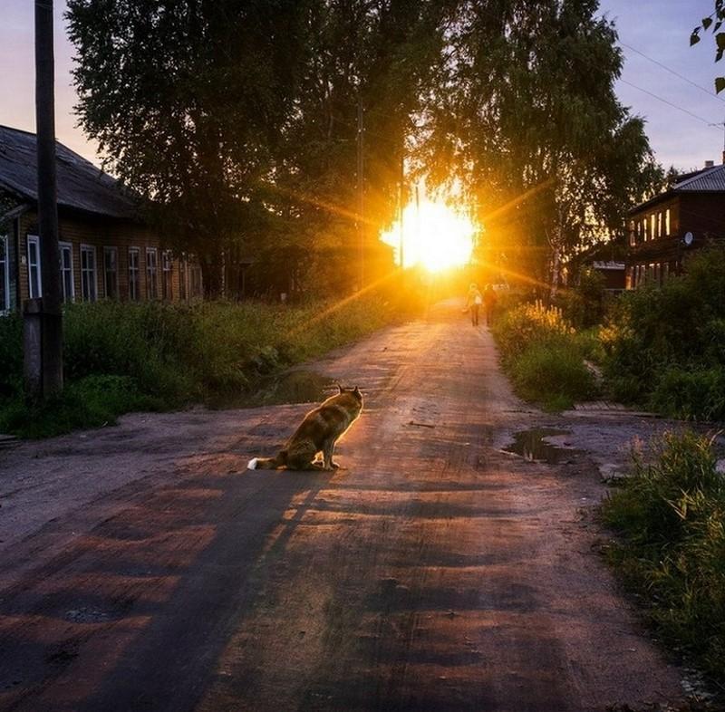 В гордом одиночестве деревня, детство, жизнь, ностальгия, период, русская деревня