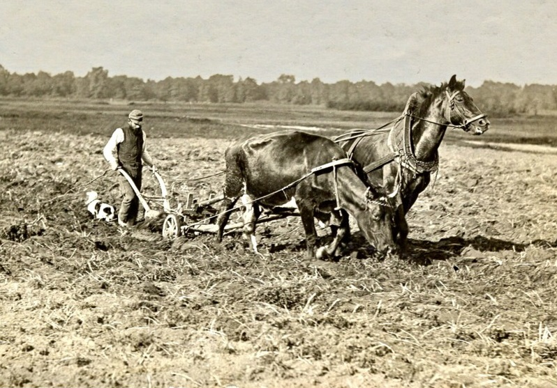 Крестьянин пашет землю, 1907 год