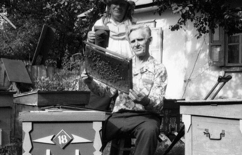 Это пчеловоды из Украины. Михаил Жеребцов потерял ногу во время Великой Отечественной войны. Он был танкистом.