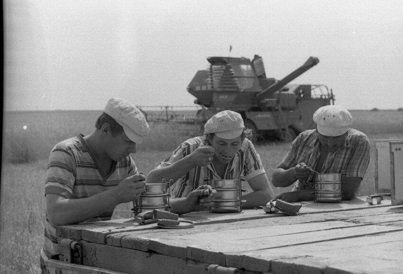 Обед комбайнеров, 1984 год