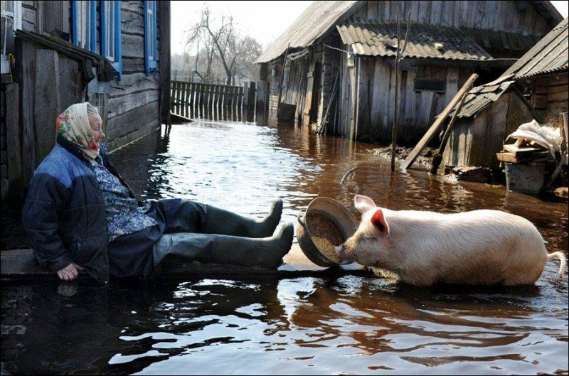Наводнение наводнением, а обед по расписанию