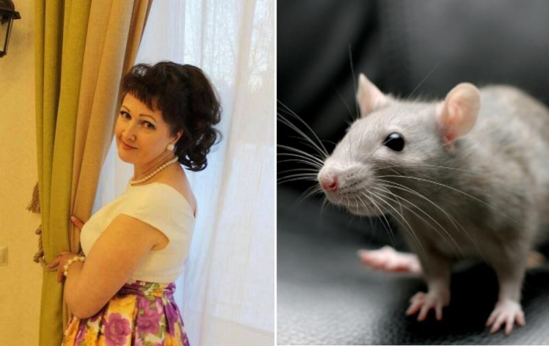 Ябеда соленая: воспитательницу уволили из-за показа родителям «крысиного» видео