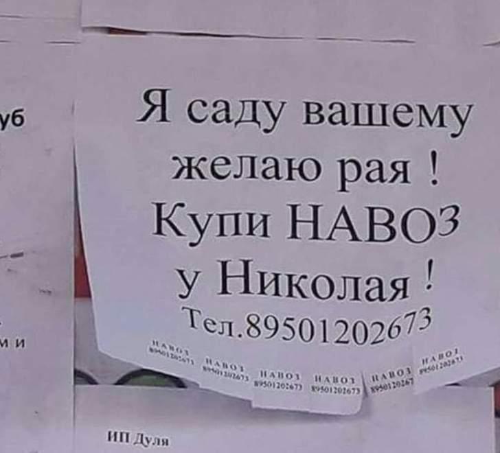 Когда в тебе пропадает дар поэта Россия, забавно, объявления, подборка, умора, юмор