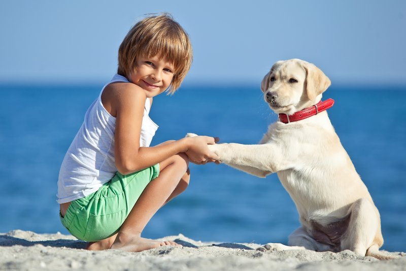 Вместе навсегда: фото о том, как животные ладят с детьми  дети, животные, лад, мило, фото