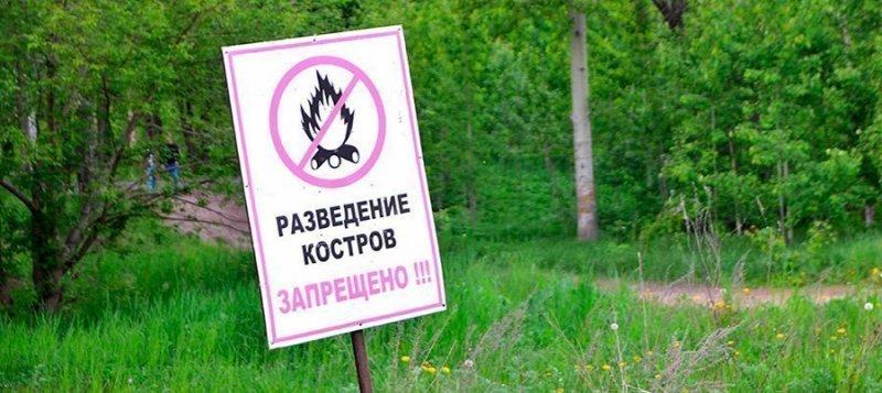 За разведение костров в лесу станут серьезно наказывать рублем костер, нарушители, нововведение, новости, режим чс, штраф