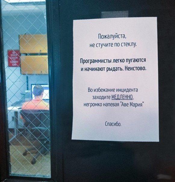 Офисный планктон жжет: повседневный юмор рабочих будней