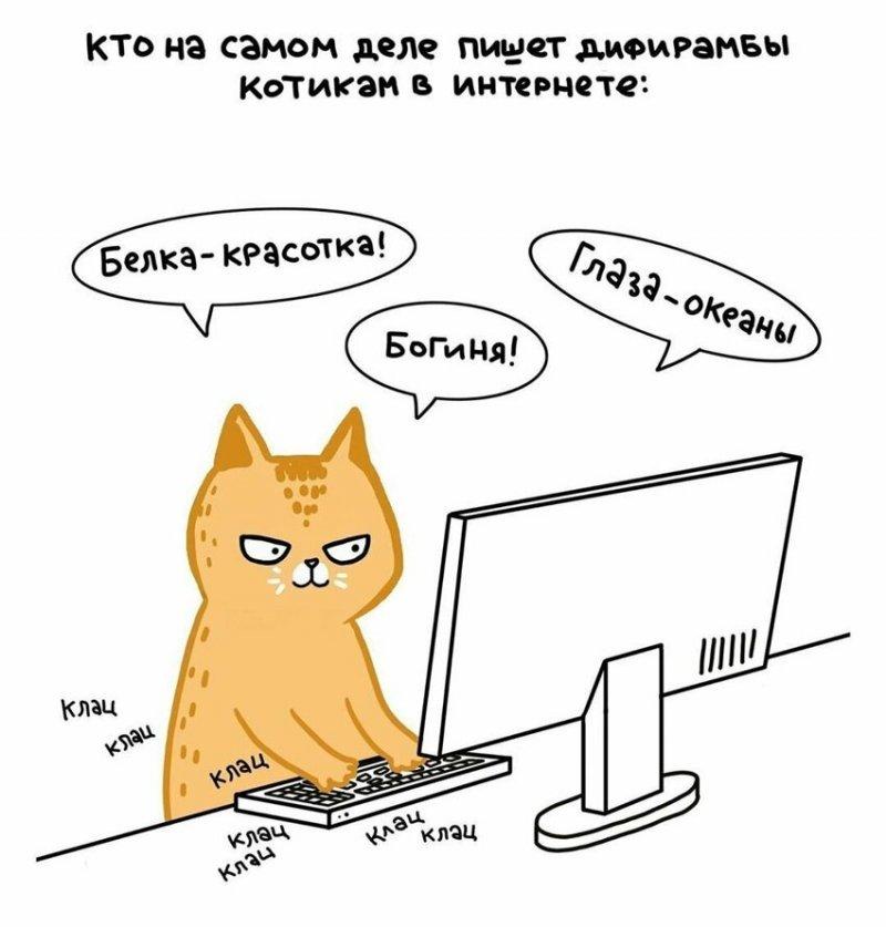 Пушистые озорники: россиянка создала забавные комиксы про котов  животные, иллюстратор, коты, лена соломонова, рисунок, художница иллюстрация, юмор