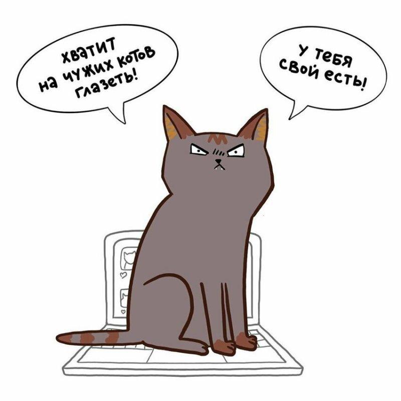 Пушистые озорники: россиянка создала забавные комиксы про котов
