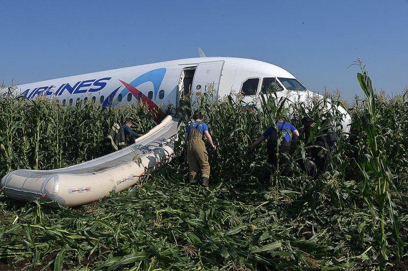 В Сети благодарят пилотов аварийно севшего Airbus A321
