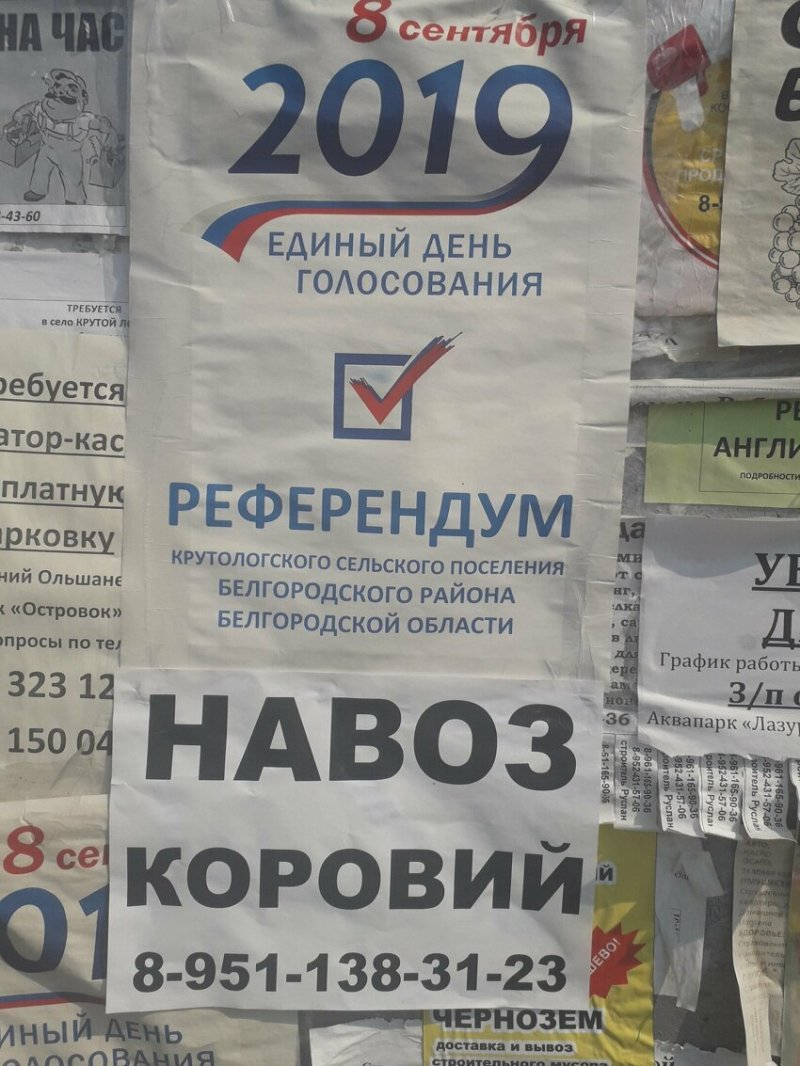 Однажды на выборах