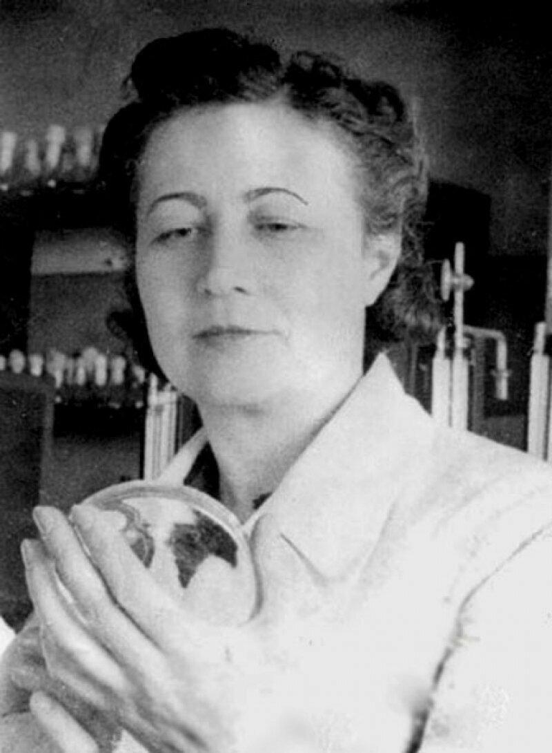 Зинаида Виссарионовна Ермольева (1898-1974)
