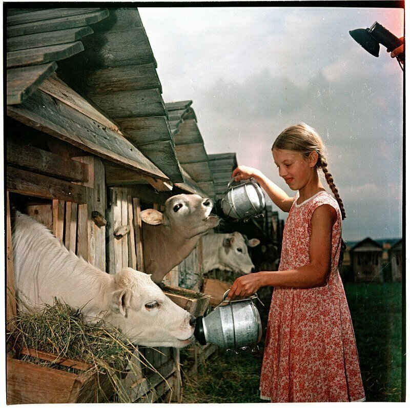 Советская деревня: фото, возвращающие в детство