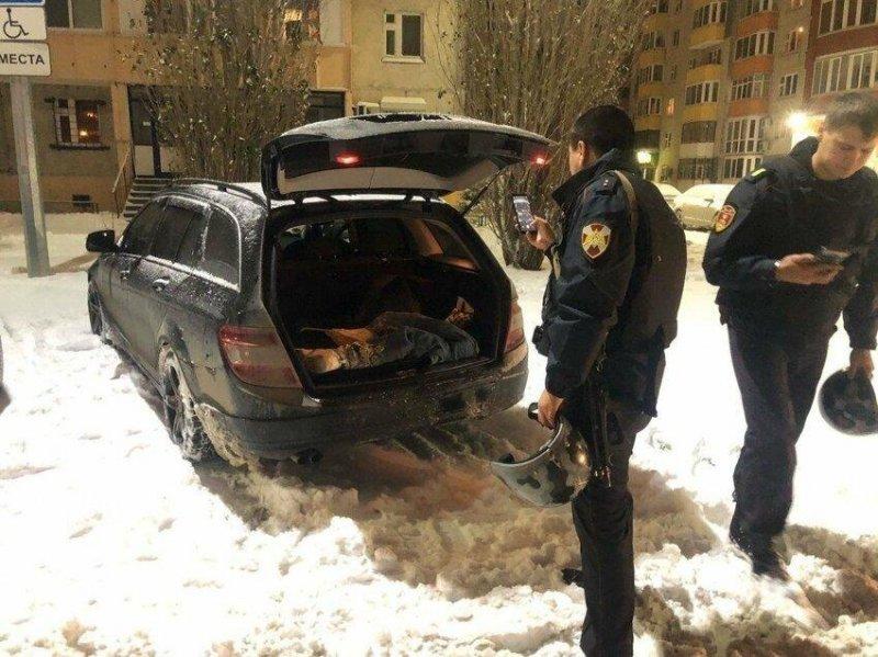 """Неудачная шутка: """"труп"""" в машине россиянина заинтересовал полицейских"""