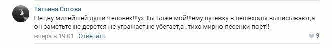 Нарушать, так с музыкой: в Москве пьяный водитель достал балалайку перед полицейскими