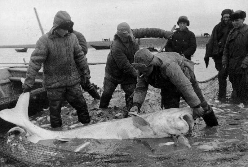 Лица эпохи: подборка кадров времён СССР