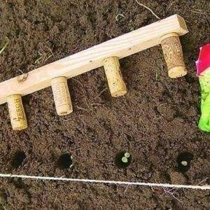 Креатив, который пригодится любому садоводу-огороднику