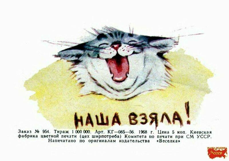 """Добрые воспоминания: детская книга """"Кот-болельщик"""""""