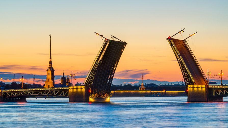 Рекорд 63-летней давности: в Санкт-Петербурге из-за потепления расцветает верба