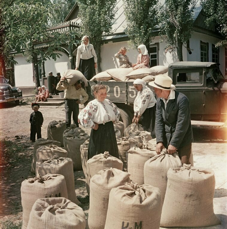 Украинское село, 1950