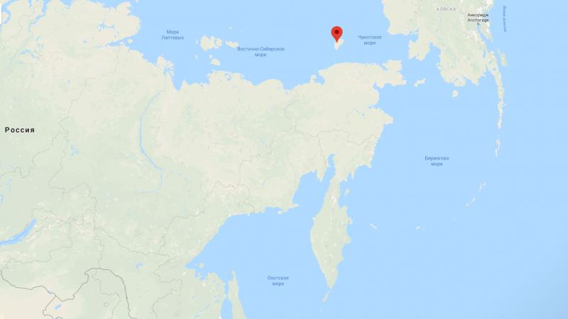 Красота России: остров Врангеля