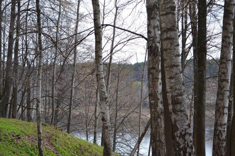 Синоптики спрогнозировали теплый апрель на всей территории России