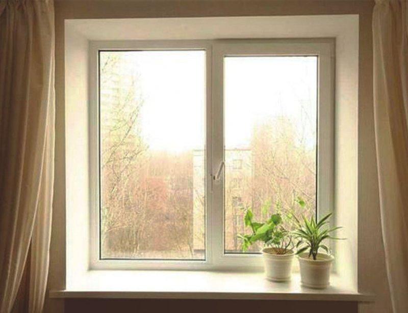 """""""Кот пытался бегать со мной"""": жительница Якутии пробежала полумарафон в квартире"""