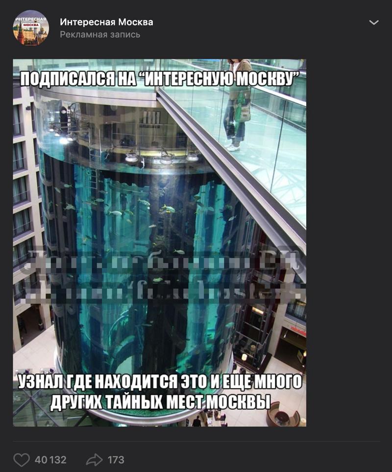 Коварные фейки, в которые поверили миллионы россиян