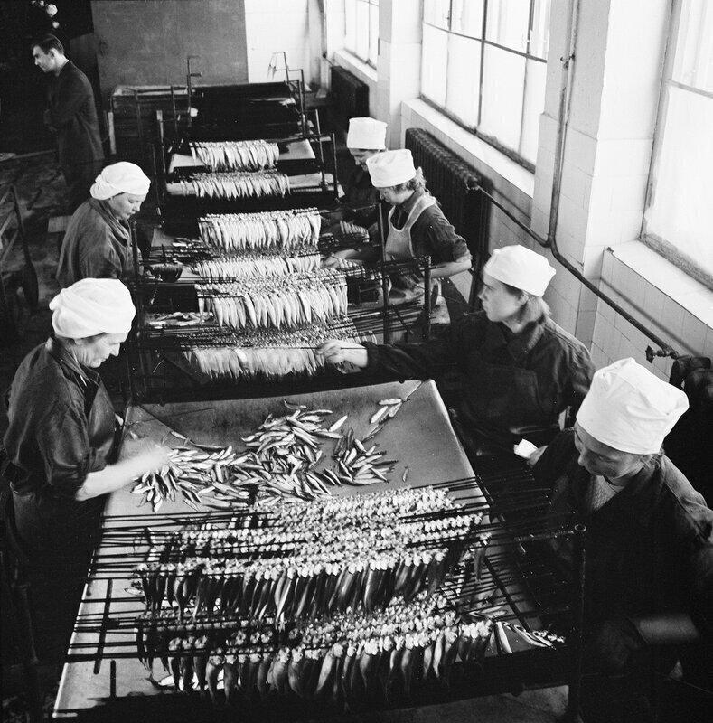 Эстонской консервный завод, СССР, 1950-е годы